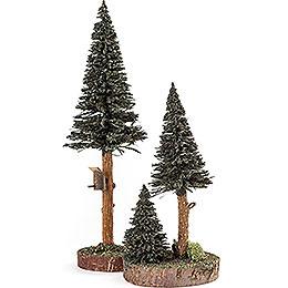 Nadelbäume mit Vogelhaus grün, 2 - teilig  -  27cm