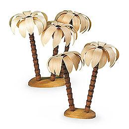 Palmengruppe  -  17cm