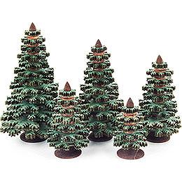 Schichtenbäume  -  Nadelbäume grün, 5 - teilig  -  8cm
